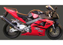 Silencieux Superline CBR 900 RR Big Oval Carbone